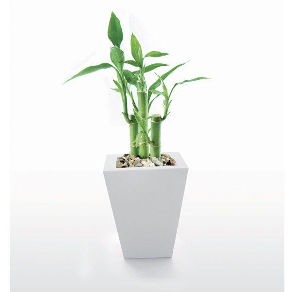 Vaso polietilene NL Emo 32-V
